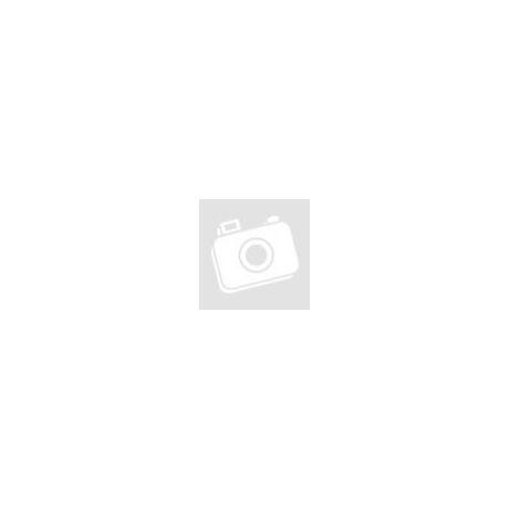 Fiberlogy Burgundi színű átlátszó Easy ABS filament